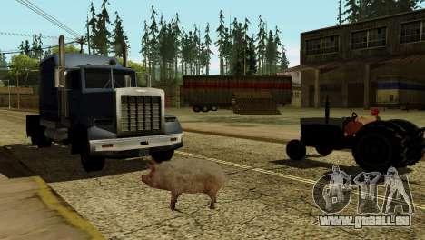 Die Möglichkeit von GTA V spielen für Tiere für GTA San Andreas sechsten Screenshot