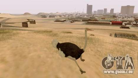 La possibilité de GTA V à jouer pour les animaux pour GTA San Andreas deuxième écran