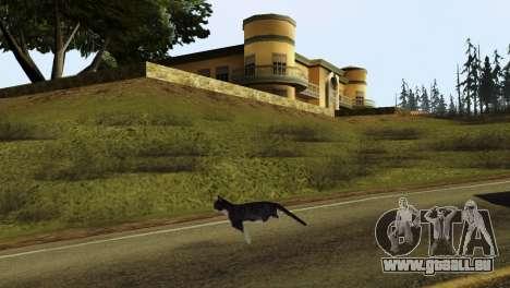 La possibilité de GTA V à jouer pour les animaux pour GTA San Andreas quatrième écran