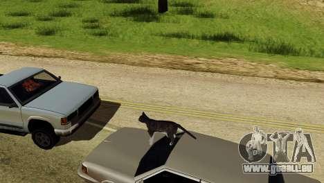 Die Möglichkeit von GTA V spielen für Tiere für GTA San Andreas fünften Screenshot