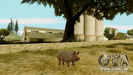 Die Möglichkeit von GTA V spielen für Tiere für GTA San Andreas