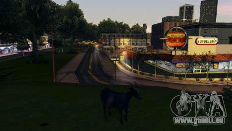 Die Möglichkeit von GTA V spielen für Tiere für GTA San Andreas zehnten Screenshot