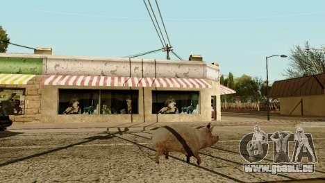 Die Möglichkeit von GTA V spielen für Tiere für GTA San Andreas siebten Screenshot