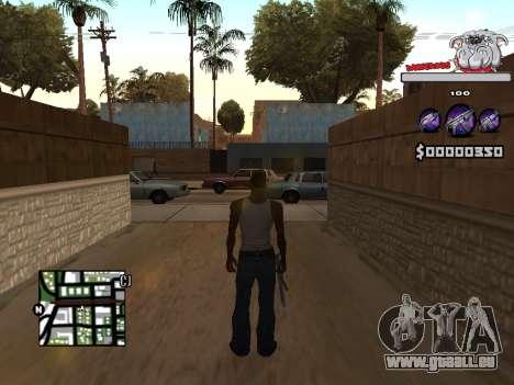 C-HUD by Sorel für GTA San Andreas zweiten Screenshot