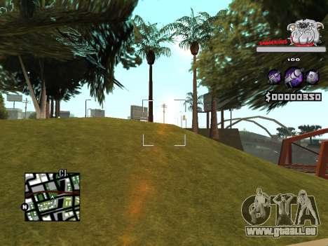 C-HUD by Sorel für GTA San Andreas fünften Screenshot