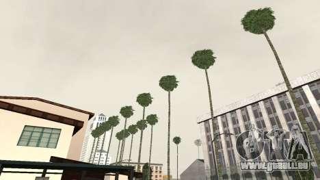Des routes et de la végétation de Los Santos pour GTA San Andreas deuxième écran