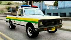 Chevrolet C10 Patrulla