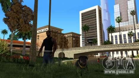 ClickClack ENB v2.0 für GTA San Andreas zweiten Screenshot