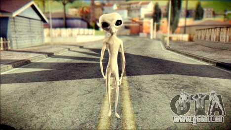 Gray Alien Skin Skin für GTA San Andreas