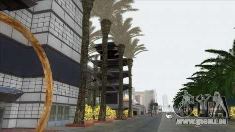 Autumn in SA v2 pour GTA San Andreas neuvième écran