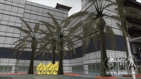 Autumn in SA v2 pour GTA San Andreas huitième écran