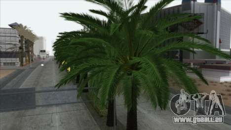 Autumn in SA v2 pour GTA San Andreas septième écran
