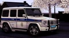 Mercedes-Benz G55 AMG ГУ МВД