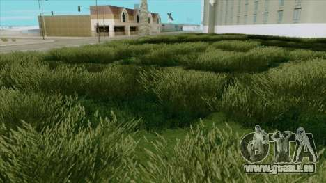 Beautiful Vegatation + Behind Space Of Realites pour GTA San Andreas