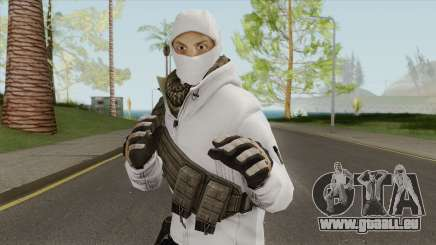 Arctic Leet Skin V3 (Counter-Strike Online 2) pour GTA San Andreas