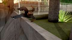 GTA IV Style Climb Camera für GTA San Andreas